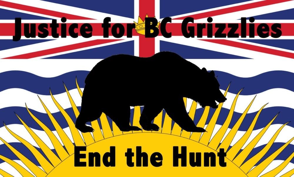 BC flag & bear